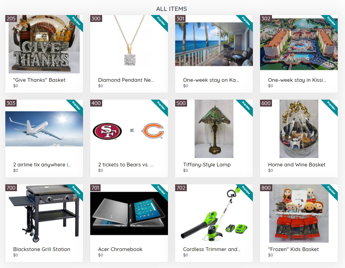 Auction Items Preview